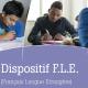 Dispositif Français Langue Étrangère